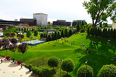 #people #sun #happiness (ionela_diana_99) Tags: park street travel people sun green canon eos photo high walk young happiness trampoline romania shooting 1855 childs iasi amateurs neture 100d