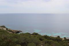 IMG_0484 (eeliisaancheez) Tags: travel viaje paisajes mallorca palma islas baleares illesbalears islasbaleares