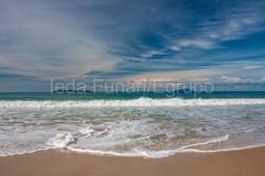 4ilhas-0162 (iedafunari) Tags: santa praia brasil mar quatro catarina ilhas