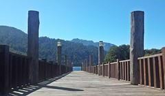 Muelle en Pto Fuy (german.garro) Tags: chile patagonia lake lago muelle andes cordillera sudamerica