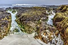 Two Tide Pools (joe Lach) Tags: tidepool rocks pacificocean waves moss algae sand beach asilomarstatebeach pacificgrove montereybay montereypeninsula california water waterpictorial joelach
