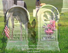 Fotos on Friday: May 27, 2016 (Kristen Fletcher Photography) Tags: flowers flag graves deer memorialday