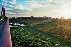 Elbe # Radweg # 35 # Nikon F3 Kodak Portra160 - 2015 (irisisopen f/8light) Tags: color film analog nikon kodak f f3 farbe portra negativ 160 negativfilm colornegativ irisisopen
