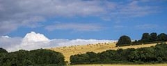 distant bales and even further away birds (HHH Honey) Tags: sonya7rii dorset sony70300g bales haybales harvest crops summer birthdaymicrominimoon landscape clouds cloudscape godmanstone nethercerne