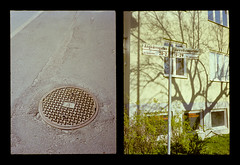 2016-04--05 - Olympus Pen EE - Kodak Ektar 100-08 (sarajoelsson) Tags: city urban color film analog pen spring diptych sweden stockholm snapshot olympus ishootfilm analogue halfframe everydaylife filmgrain vardag 2016 filmphotography penee filmisnotdead halvformat diptyk teamframkallning digitizedwithdslr