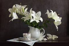Iciness (panga_ua) Tags: flowers white cold contrast ceramics sweet embroidery lilies icecream jug bouquet icy iciness frozenberries