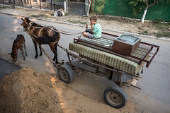 3 (NoCommonSense) Tags: moldova 2016 people summer street poverty agriculture