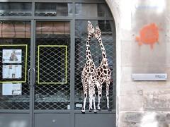 MOSKO (Brin d'Amour) Tags: mosko pochoir stencil girafe streetart paris 75004 brindamour