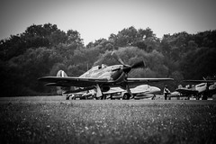 HURRICANE X 'P2921 (technodean2000) Tags: hurricane x p2921 p291 aircraft airplane classic raf military nikon d610 lightroom uk wings wheels top gear test track