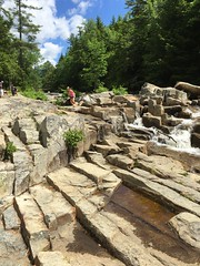 IMG_5856 (cayuill) Tags: jacksonfalls 2016 sophie nh