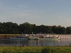 Dresden-0121_1 (pischty.hufnagel) Tags: dresden elbe dampfschiff dampfschifffahrt kurort rathen wende schaufelraddampfschiff schaufelraddampfer