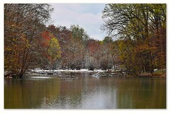 Spring Snow (dianealdrich - Please read my profile) Tags: snow snowscape serenescene serene scene spring beautiful water southjersey southernnewjersey newjersey swedesboro landscape colorfultrees trees