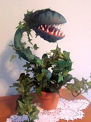 Scary Plant (AllHalloweener) Tags: halloween halloween2016 halloweenfun halloweeniscoming diyprojects halloweendecorations halloweenfacts halloweenholiday darkness evil fear candies party halloweenparty sayingsabouthalloween halloween31oct halloweencelebrations halloweenisfun halloweenvisits travel places recipes halloweenpranks halloweencostumes halloweenmakeup halloweenstories halloweenartists halloweenalbums halloweendiy halloweenexteriordecoration
