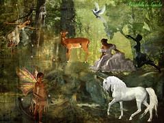 La Forêt des Rêves ! (christabelle12300 (très peu présente)-) Tags: nicething notaterrorist artonflickr mastershot eperke imageexpression