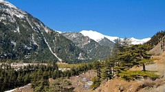 Sangla valley, the valley of gods. (draskd) Tags: india mountains nature landscape shimla himachalpradesh sangla mountainscape kinnaur sanglavalley baspavalley beautifulvalleys baspariver snowcoveredvalley valleysofhimachal himachaltours draskd hillsofhimachal pinesonhills waytochitkul valleysofkinnaur worldsmostbeautifulvalleys