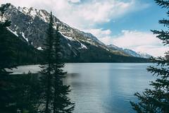 Jenny Lake. (kylesipple) Tags: camping lake nature landscape jenny backpacking wyoming grandtetons leigh grandtetonnationalpark jacksonlake poler jennylake leighlake campvibes