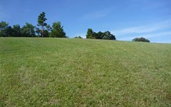 Lot 8, 176 Fowlers Lane, Possum Creek NSW