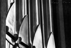 Voices - 1 (Kaya_Kirmizi) Tags: blackandwhite bw music metal germany reflex nikon cathedral organ instrument augusta 2014