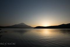 Sunset with Mt.Fuji ( ) Tags: sunset lake snow nature japan star human  fujisan  shizuoka   mtfuji yamanashi fujiyama starlight       lakeyamanakako   naokiishii ishiinaoki  ginarainbow