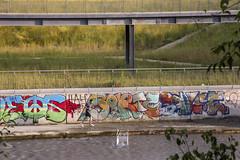 aggiungi al carrello (Zioluc) Tags: park urban water river shopping torino graffiti trolley dora cart reversed turin spina3 luciobeltrami