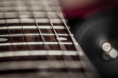 guitar (timp37) Tags: music chicago macro canon guitar 100mm musical instrument strings 2014