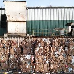 #recycle(d) #cardboard #bale(s) #factory (Heath & the B.L.T. boys) Tags: washington factory cardboard recycle gogreen instagram