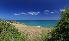 sigh (Paul J's) Tags: sea summer beach field grass clouds tasman emerald taranaki kaupokonui
