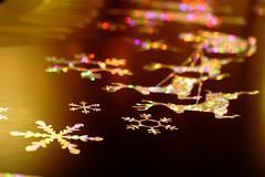 (hauko) Tags: christmas winter tokyo illumination canoneoskissx2