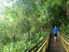 Circuits de marche aux chutes Iguazu