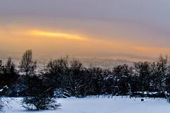 Winterimpression (coellerich) Tags: wood schnee winter light sky sun snow nature fog forest germany landscape deutschland licht smog heaven nebel natur himmel stadt landschaft sonne wald ulm schneelandschaft zd 40150mm olympuspl5