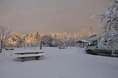 LUCE MADREPERLATA A SAVAR .......... (DAVIDE CONGIA photography) Tags: winter aurora camper inverno zero viaggio sotto finlandia in lapponia boreale svezia finlandese
