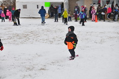 Musher Mania 2015 (Forest Preserve District of Will County) Tags: county winter dog forest husky district reservoir will musher mushing sled preserve mania monee