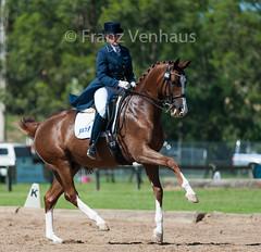 150118_Clarendon_8254.jpg (FranzVenhaus) Tags: horses sydney australia riding newsouthwales athletes aus equestrian supporters riders officials dressage spectatorsvolunteers