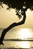 islaf-5719 (AndresMontanoh) Tags: sea landscape mar colombia paisaje isla caribe islafuerte