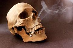#FotoDelDa #DiaMundialSinTabaco Da Mundial Sin Tabaco (Candidman) Tags: mxico del foto fotos sin mundial candidman da tabaco calavera cigarro salud ciudaddemxico