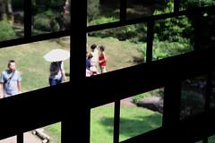 Edo-Tokyo architectural museum02 (sunuq) Tags: plant tree japan canon eos tokyo open bokeh air architectural        ef100mm  museum  architecturalmuseum ef100mmf28lmacroisusm 5dsr edotokyo