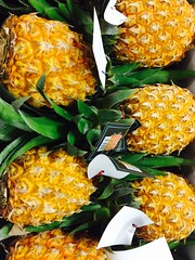 Ananas Victoria, Import