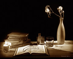 Pausa (Soloross) Tags: light roses stilllife flower reading glasses book mood candle fineart pause toned