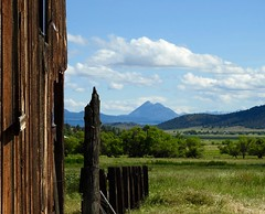 Wide open spaces... (shercares4u) Tags: butte shasta siskiyou mules muirs