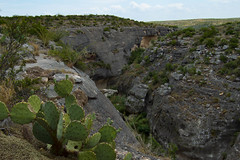 Desert Canyon (MikeInOwasso) Tags: cactus green landscape rocks deep dry canyon pear ravine seminole prickly arid