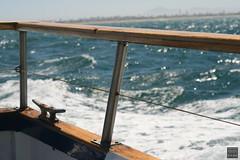 Anacapa Island Day Trip (Stephanie_Asher) Tags: ocean california blue sea summer water birds canon 50mm boat losangeles gulls railing f18 nationalparks venturacounty channelislands seabirds anacapa polarizingfilter digitalrebelxti