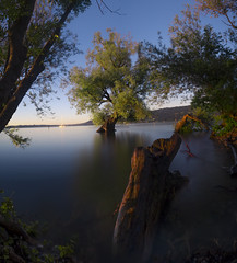 flooded tree (photography.MN) Tags: wood blue trees sunset lake tree green art nature water beautiful clouds landscape sundown flood cloudy outdoor no constance flooded