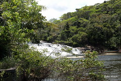 Cachoeira de Trememb-Mara (Carlos Amorim (Camorim10)) Tags: verde brasil bahia cachoeira mara cascata trememb
