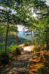 Main Overlook Trail, Cloudland Canyon State Park, Trenton, Georgia (BDM17) Tags: park trees ga georgia view state path main canyon trail gorge overlook trenton cloudland