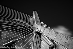 Rooted (IdeaLuz Photography) Tags: road street city bridge sky bw usa white black boston architecture clouds photography blackwhite long exposure cityscape outdoor massachusetts sony blurred structure massive a7ii a72