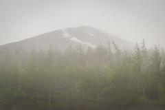 Mount Fuji in misty weather (lonerasser) Tags: japan fog mountfuji fujiyama mistyweather