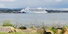 Aidavita Cruise Ship, Invergordon, 29th June 2016 (allanmaciver) Tags: aidavita cruise ship invergordon easter ross smile eyes lips sleek white visitor rocks low view allanmaciver