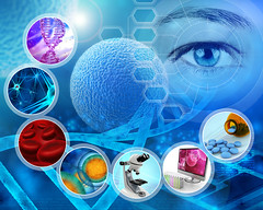 medical science and scientific research abstract backdrop (Universidad Politcnica de Madrid) Tags: science background cell stem drug concept medicine medical analysis research discovery dna pharmaceutical laboratory pharmacy scientific technology genetic biology molecule abstract backdrop graphic design poster biochemistry infographics chemistry healthcare molecular microscope eye test neuron biotechnology helix engineering pharmacology chromosome care gene disease experiment blue health neural human virus microscopic biological italy