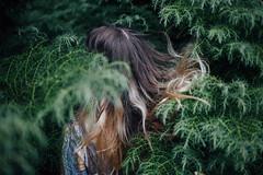 matthew ten, verse thirty (Luke_Williams) Tags: road trip bon summer france west nature hair photography coast williams head matthew luke bible normandie normandy iver 1030 verse 2016 2030