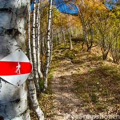 Salita verso Montegreco (Bluesnapshots) Tags: walking ticino malvaglia vallediblenio valledelsole